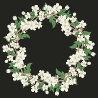 Fleur de cerisier rond motif sur fond noir vecteur