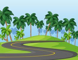 Route courbe dans le parc