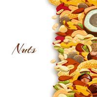 Fond de mélange de noix