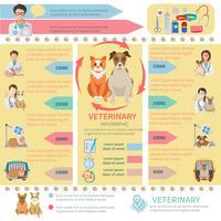Infographie vétérinaire