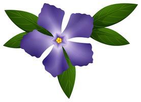 Bigorneau de couleur bleue vecteur
