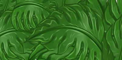Design de fond avec des feuilles vertes vecteur