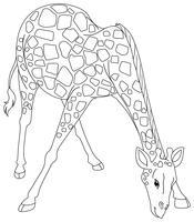 Griffonnage animal de dessin pour girafe vecteur