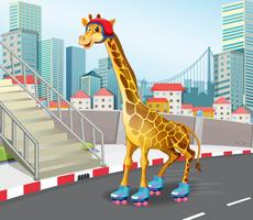Girafe jouant au roller