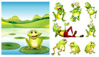 Scène avec grenouille dans l'étang et autres personnages de grenouilles vecteur