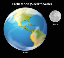 Earth Moon à l'échelle vecteur