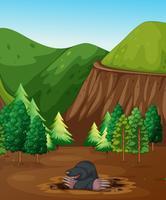 Une taupe creusant le sol