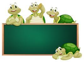 Tableau noir avec des tortues sur le cadre vecteur