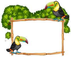 Modèle de bordure avec deux oiseaux toucan vecteur