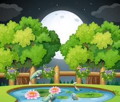 Poisson dans l'étang la nuit vecteur