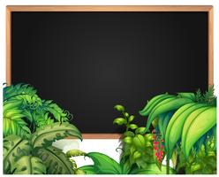 Modèle de bordure avec des plantes tropicales