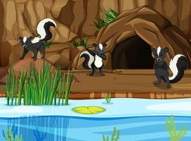 Groupe de skunk dans la nature vecteur