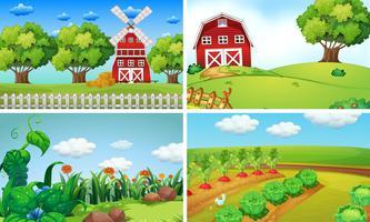 Scènes de fond avec des légumes à la ferme vecteur
