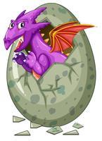Dragon sort de l'œuf vecteur