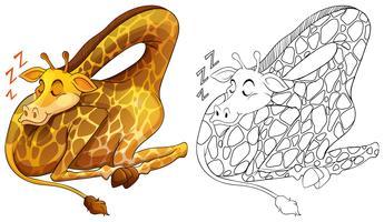 Contour animal pour girafe endormi vecteur