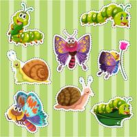 Ensemble d'autocollants pour différents types d'insectes vecteur