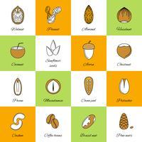 Ensemble d'icônes de noix vecteur