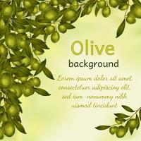 Fond d'huile d'olive vecteur