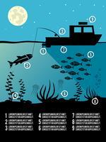 Affiche de pêche infographique vecteur