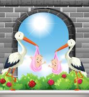 Deux oiseaux livrent des bébés filles vecteur
