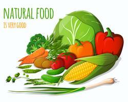 Nature morte aux légumes vecteur
