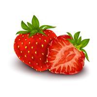 Affiche isolée aux fraises vecteur
