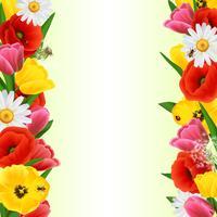 Bordure fleurie colorée vecteur