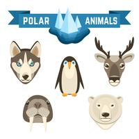 Ensemble d'animaux polaires
