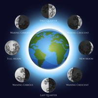 Illustration des phases de la lune vecteur