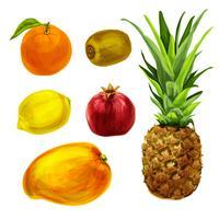 Collection de fruits tropicaux bio vecteur