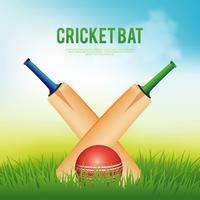 Illustration de batte de cricket vecteur