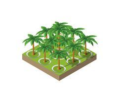 Arbres d'un palmier du parc vecteur