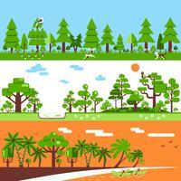 Bannières de forêt tropicale à feuilles caduques de conifères
