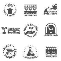 Ensemble d'étiquettes de semis vecteur