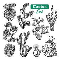 Cactus Icons Set vecteur