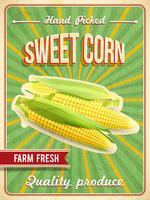 Affiche de maïs sucré vecteur