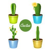 Cactus En Pots Set vecteur