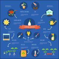 Ensemble d'infographie de semis