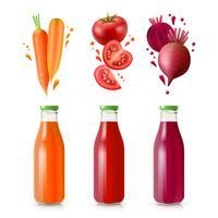 Jus de légumes vecteur