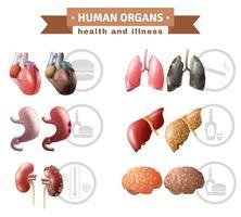 Affiche médicale sur les risques pour la santé des organes humains vecteur