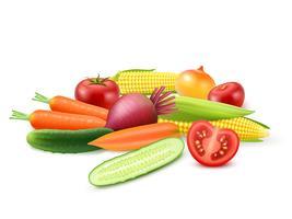 Modèle coloré de légumes frais vecteur