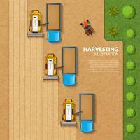 Récolte illustration vue de dessus vecteur