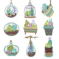 Set d'icônes de plantes succulentes vecteur