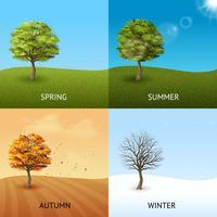 Ensemble de concept d'arbre