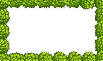 Scène de bordure de feuille naturelle