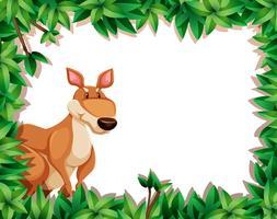 Un kangourou sur cadre nature vecteur