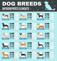 Infographie de chiens de race vecteur