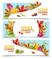 Bannières de feuilles d'automne vecteur