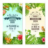 Plantes tropicales 2 bannières de vacances colorées vecteur