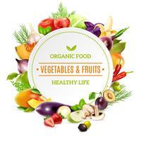 Fond naturel d'aliments biologiques vecteur